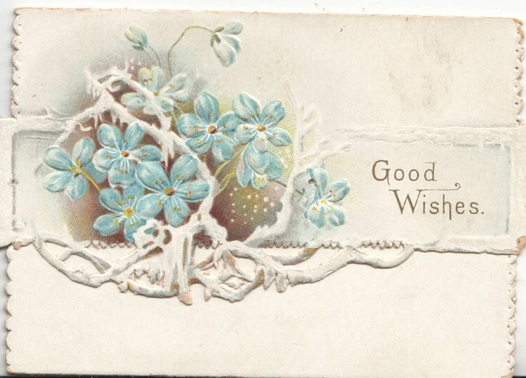 GOOD WISHES on white plaque right of forget-me-nots on perforated top flap