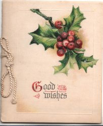 GOOD WISHES (G illuminated) below berried holly
