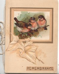 REMEMBRANCE 3 birds, perhaps English robins perched on twig in oblong above stylised ivy leaf