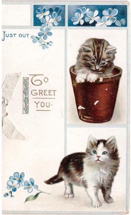 JUST OUT -- TO GREET YOU in gilt, forget-me-nots above & beside 2 kittens, one kitten in flower pot