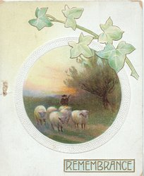 REMEMBRANCE in gilt below rural inset shepherd & 5 sheep, ivy above, pale blue stock