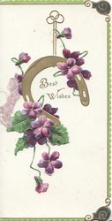 BEST WISHES in gilt framed by gilt horseshoe & violets