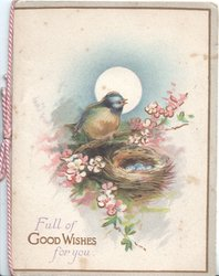 FULL OF GOOD WISHES FOR YOU below blue-tit perched beside nest of eggs, pale wild roses around