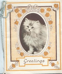 GREETINGS below kitten facing left front in oval inset surrounded by orange rose design