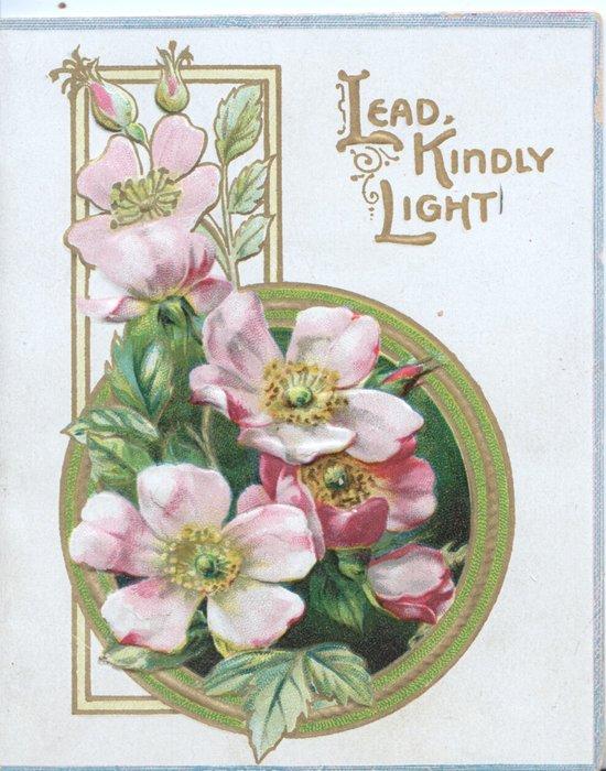 LEAD KINDLY LIGHT in gilt over wild rose design left
