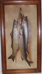 TROUT AND PICKEREL