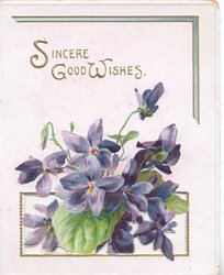 SINCERE GOOD WISHES in gilt, above violets appearing to come through letter box
