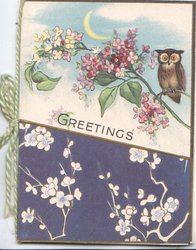 GREETINGS at centre, owl perched on lilac below sliver of moon, stylised white flowers on purple base