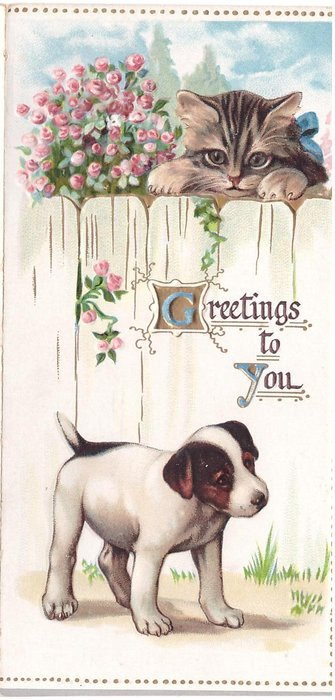 GREETINGS TO YOU (G & Y illuminated) kitten peers over fence at puppy, pink stylised rose bush