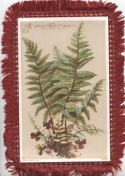 A MERRY CHRISTMAS in gilt at top over fern & scant clover