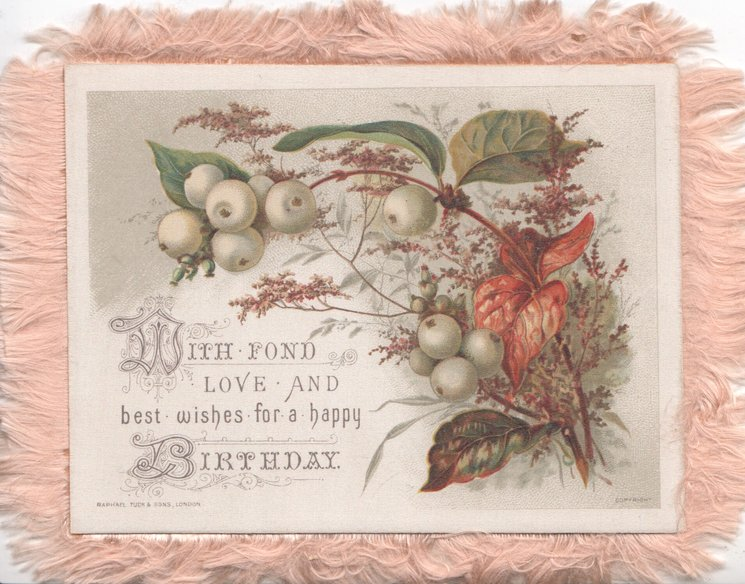 WITH FOND LOVE AND BEST WISHES FOR A HAPPY BIRTHDAY green apples & heather above & right