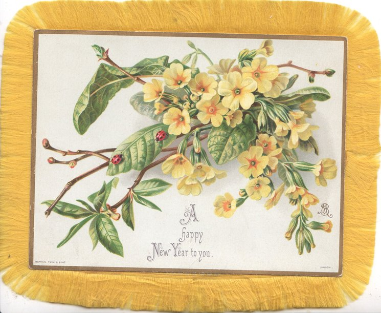 A HAPPY NEW YEAR TO YOU below yellow primroses