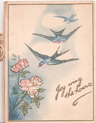JOY WING THE HOURS 3 flying blue birds of happiness fly towards pale pink roses