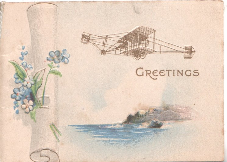 GREETINGS in gilt below antique airplane flying right over seascape, on scroll, forget-me-nots left