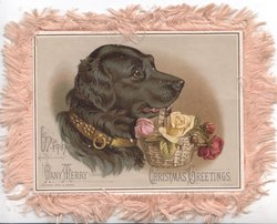 WITH MANY MERRY CHRISTMAS GREETINGS head & shoulders of black labrador, carries basket of roses