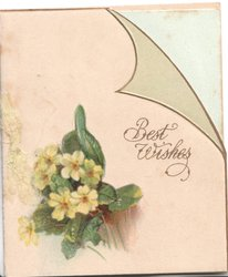 BEST WISHES in gilt on printed page, yellow primroses below left