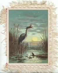 CHRISTMAS GREETINGS in gilt, moonlit scene, heron in marsh has caught a frog