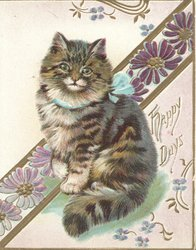HAPPY DAYS in gilt right, tabby cat sits in front of purple diagonal & gilt design