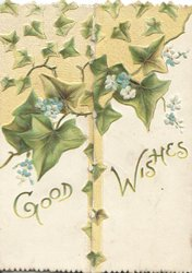 GOOD WISHES  in gilt below ivy leaves, scant forget-me-nots, yellow top background