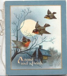 A SONG AND A WISH in white below moonlit rural inset, 3 English Robins fly & perch