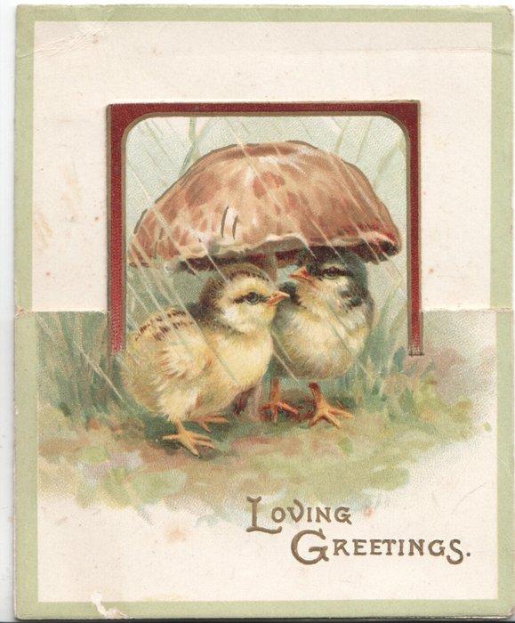 LOVING GREETINGS in gilt below 2 chicks sheltering from rain under mushroom
