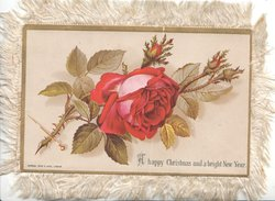 A HAPPY CHRISTMAS AND A BRIGHT NEW YEAR below red rose & 3 buds