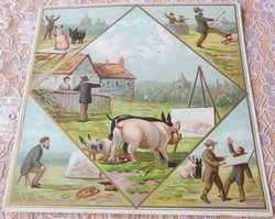 pigs at easel in central image, surrounded by four corner images of painter and pigs