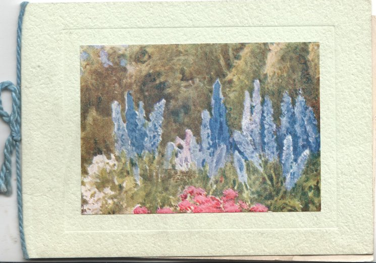 no front title, garden of blue delphiniums,red and pink flowers in front of trees