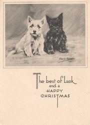 THE BEST OF LUCK  AND A HAPPY CHRISTMAS white & black puppies sit next each other