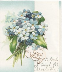 GOOD WISHES in gilt on label below bunch of forget-me-nots