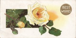 BEST WISHES in white right, in gilt plaque,  yellow rose & 2 buds left
