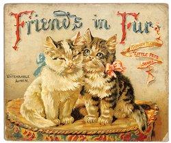 FRIENDS IN FUR