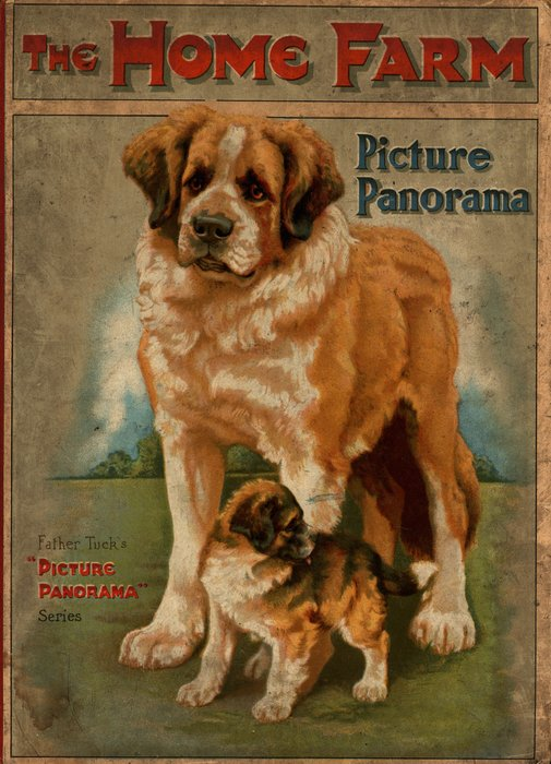 THE HOME FARM Saint Bernard dog with puppy