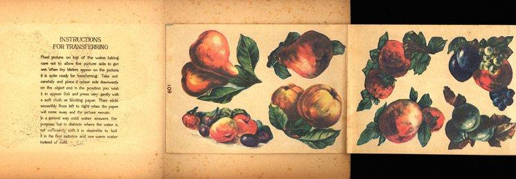 LUSCIOUS FRUIT