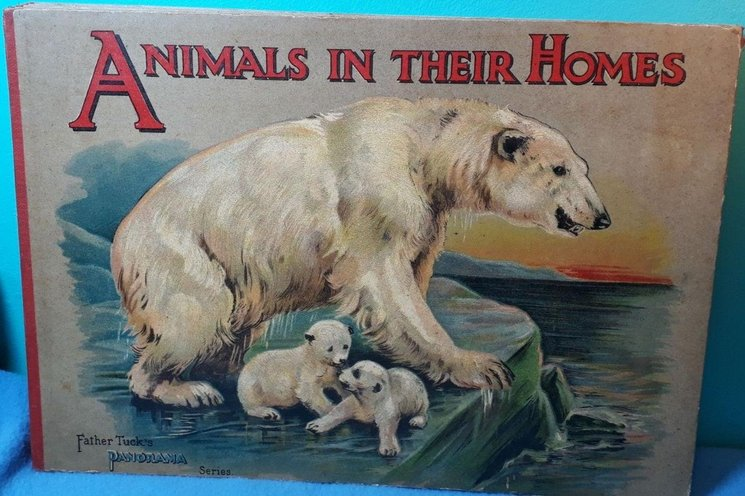 ANIMALS IN THEIR HOMES
