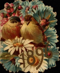 1896 two birds sitting on branch among lots of brightly colored flowers