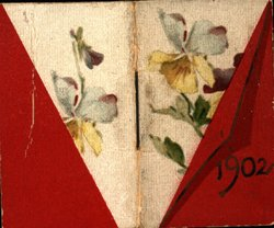 1902 bisected cover, half a flower and half red in color