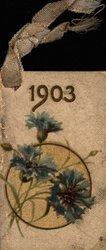 1903 blue cornflower