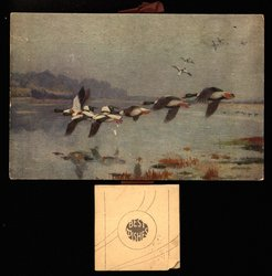 A FORMATION FLIGHT (title on reverse)