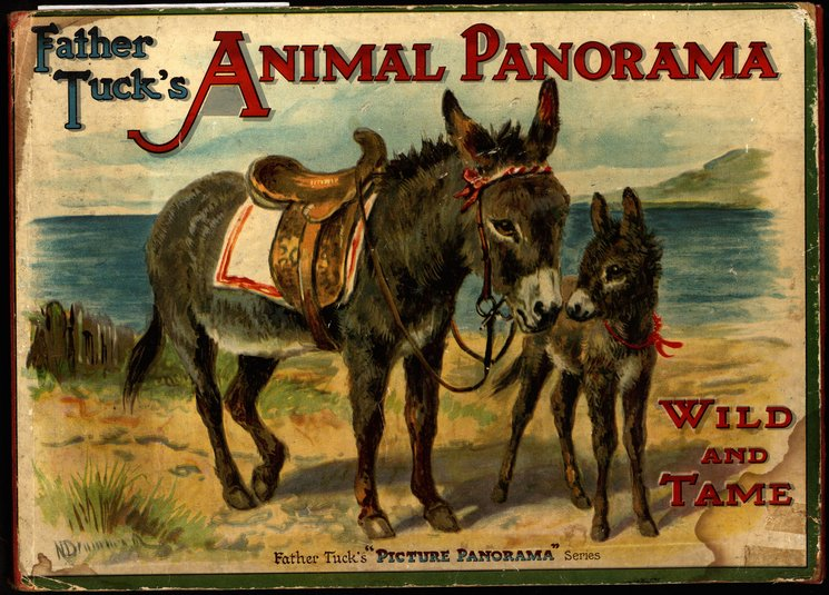 ANIMAL PANORAMA WILD AND TAME