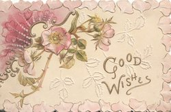 GOOD WISHES in gilt below 2 pink wild roses  & pink design