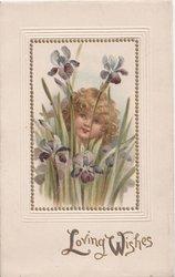 LOVING WISHES child peering through group of irises