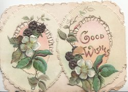 GOOD WISHES in gilt on right flap, two oval flaps with pale blue anemones