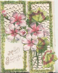HEART GREETINGS purple and white anemones, vertically, much perforated and embossed, double front flaps
