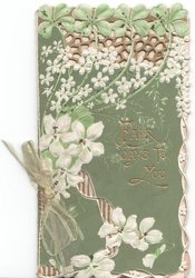 FAIR DAYS TO YOU in gilt, two styles of white embossed flowers below clovers