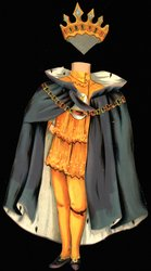gold suit with grey cape and crown