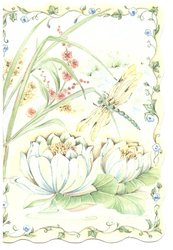 no front title, pond lilies & dragon fly`