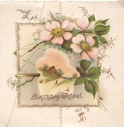 BIRTHDAY WISHES in gilt below pink & white embossed wild roses above snowy rural inset