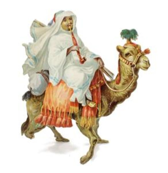 MORE FOUR-FOOTED FRIENDS,  BEDOUIN ON CAMEL