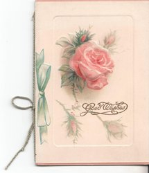 GOOD WISHES pink rose above, image of green ribbon left